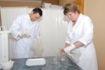 Биопластический материал Гиаматрикс